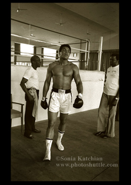 Muhammad Ali Boxing Photographs Trim in Zaire